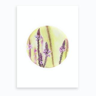 Circular Verbena Art Print