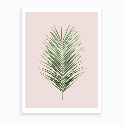 Blush Palm Leaf Art Print