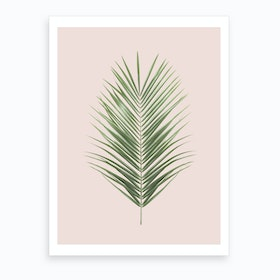 Blush Palm Leaf Art Print