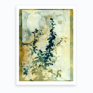 Shadows And Traces Art Print