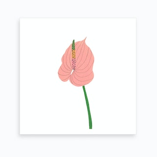 Anthurium Anthem Art Print