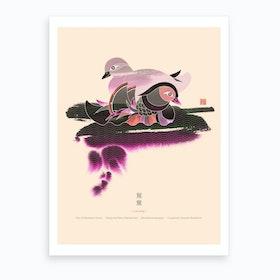 Pair Of Mandarin Ducks Art Print
