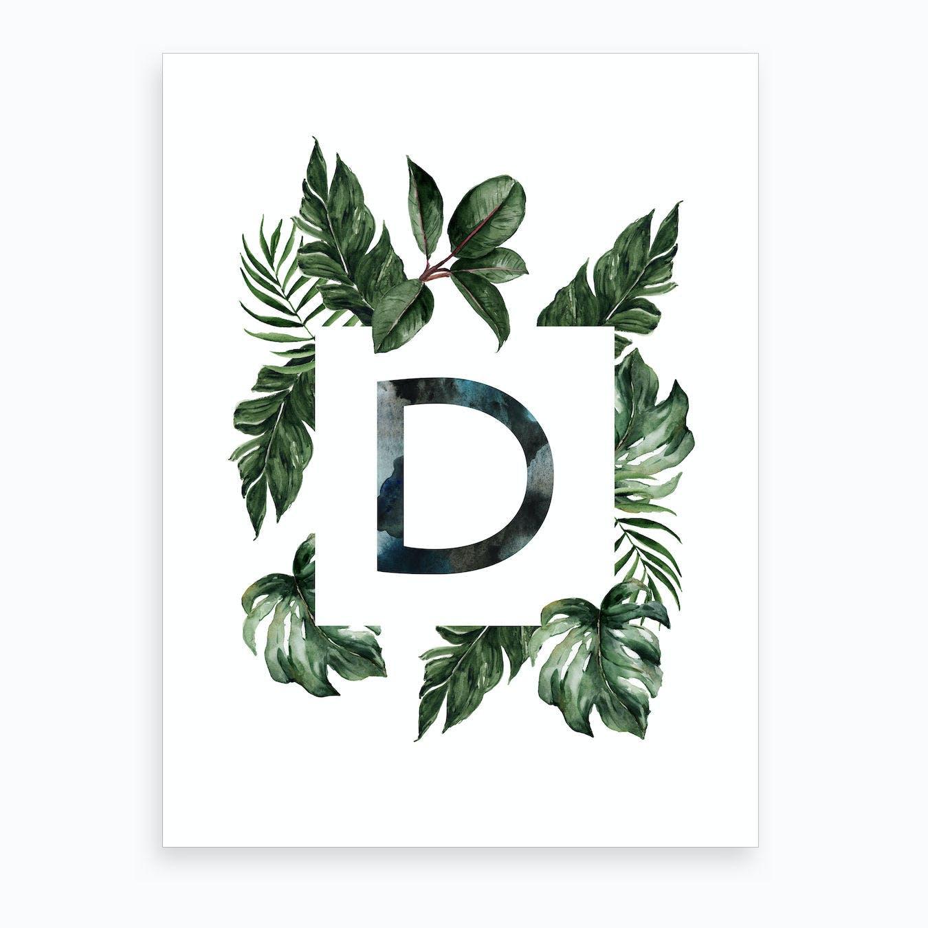 Botanical Alphabet D Art Print