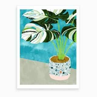 Variegated Monstera Art Print