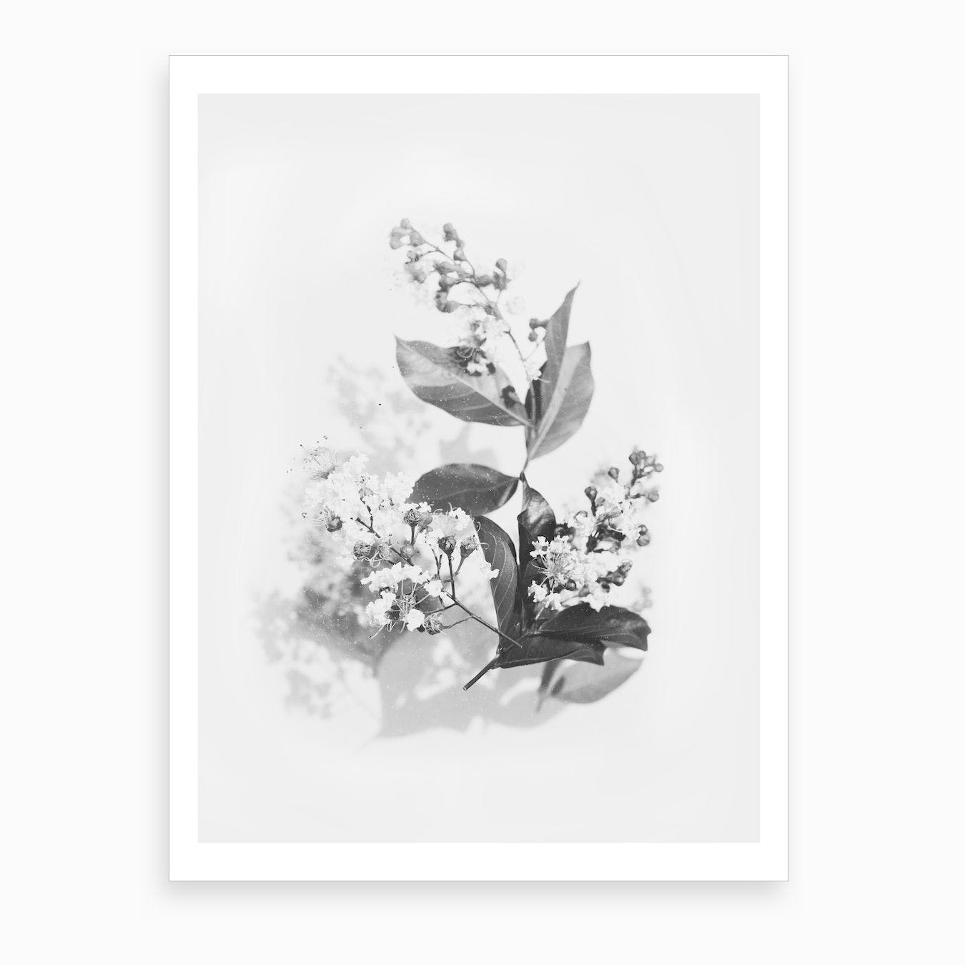 Flowers Bouquet Black And White Art Print