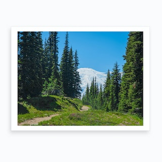 Mt Rainier Sunset Trail Art Print