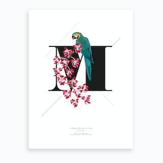 Botanical Alphabet M Art Print