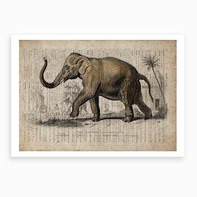 Elephant Dictionnaire Universel D Histoire Naturelle Art Print