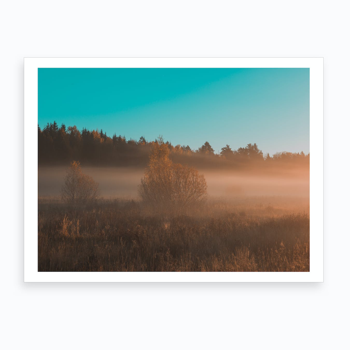Golden Morning Art Print