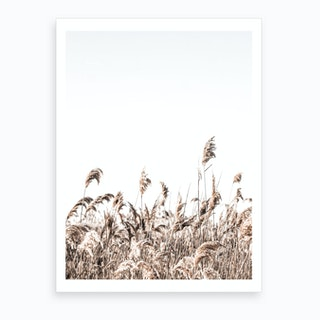 In The Reeds I Art Print