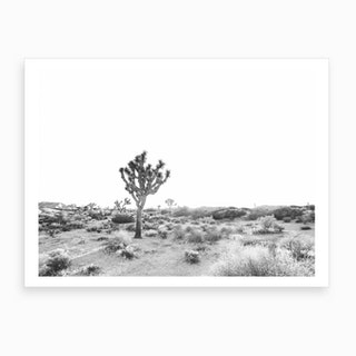 Joshua Tree Bw Art Print