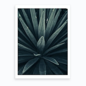Palm Shade Ix Art Print
