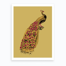 Yellow Peacock Art Print