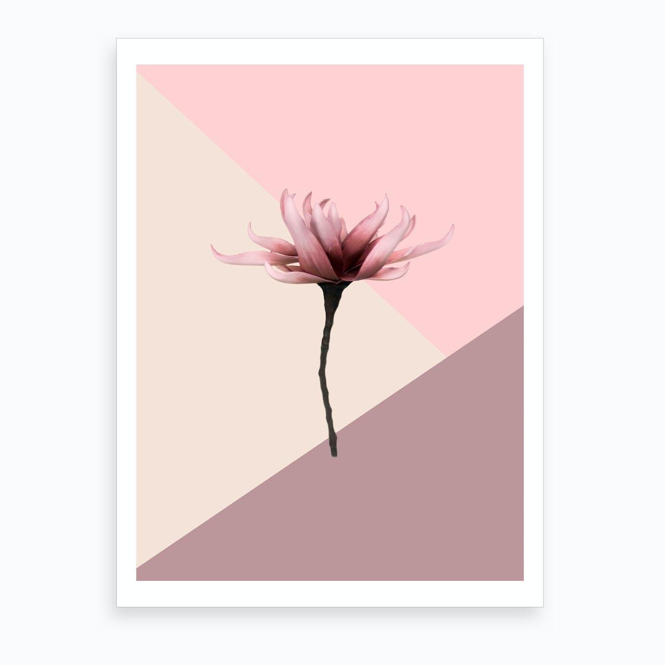 Aesthetic Flower Art Print
