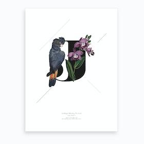 Botanical Alphabet J Art Print