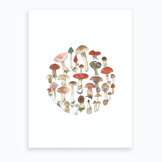 Toadstool Wheel Art Print