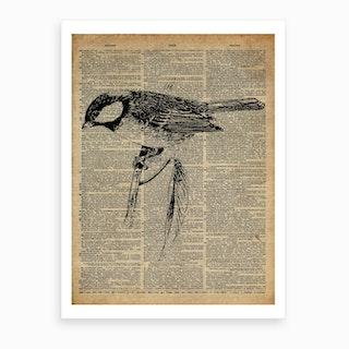 Great Tit Bird Art Print