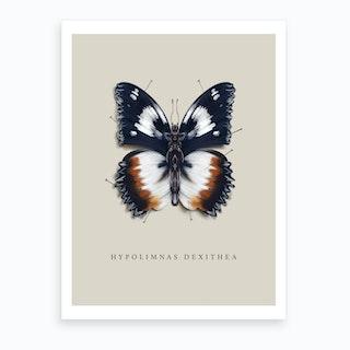 Butterfly No5 Art Print