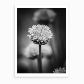 All Alone With My Thoughts Black And White 2 Art Print