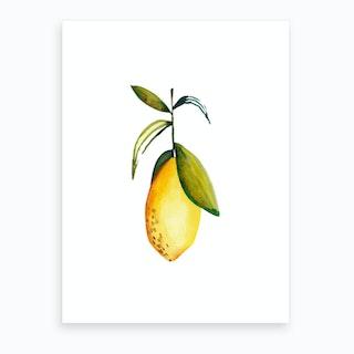 Lemon 3 Art Print