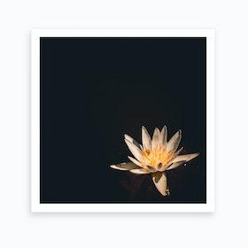 Flower Square Art Print