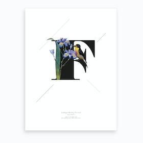 Botanical Alphabet F Art Print