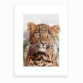 Leopard Cub Art Print