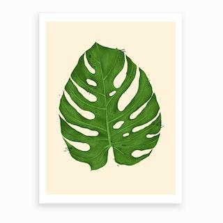 Monstera Deliciosa Leaf Art Print