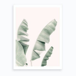 Banana Leaf Pastel Art Print