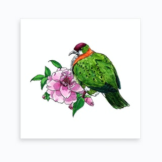 Flower Fruit Dove Art Print