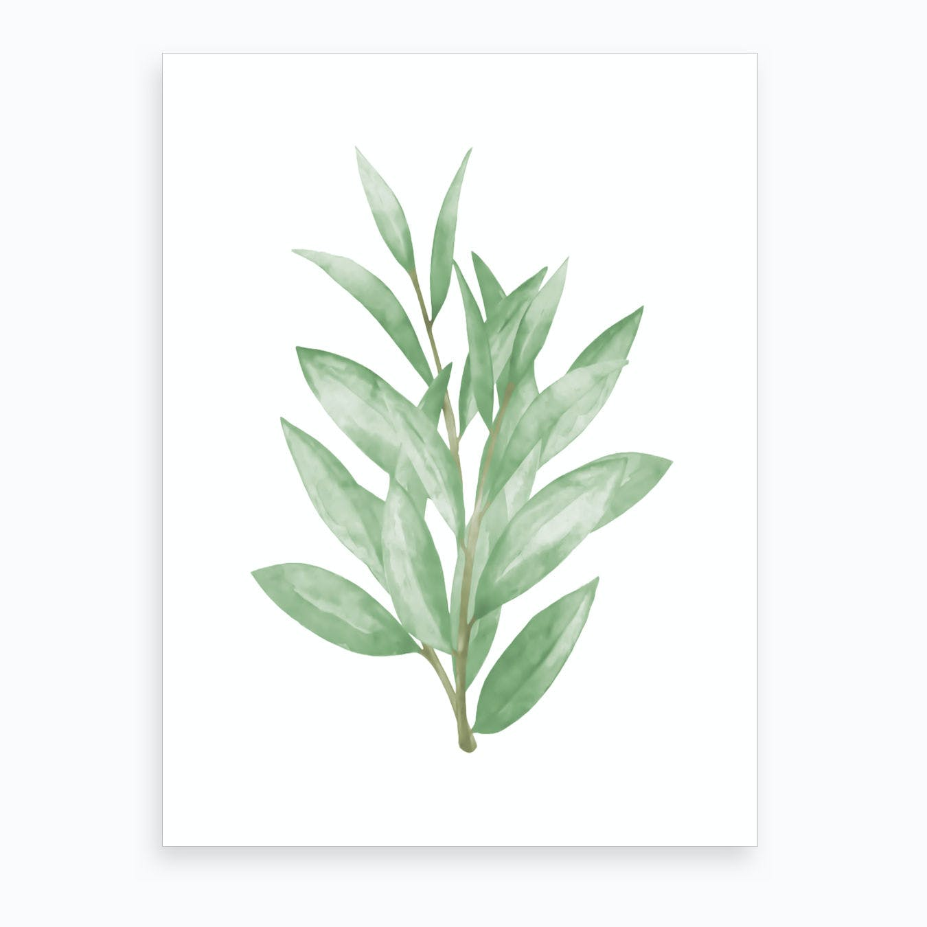 Watercolor Green Leaves Art Print
