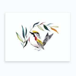 Watercolor Bird 5 Art Print