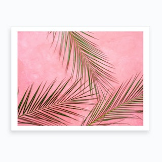 Summer Palm Leaves In Pink Wall Art Print