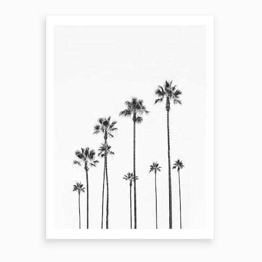 Black Palm Trees Art Print