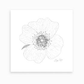 Dog Rose 2 Art Print