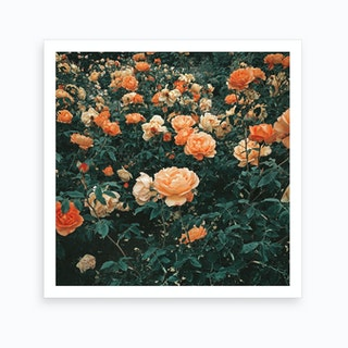 Forest Of Roses Art Print