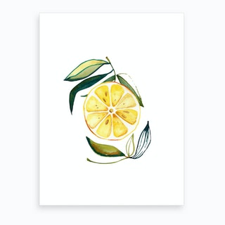 Lemon 2 Art Print