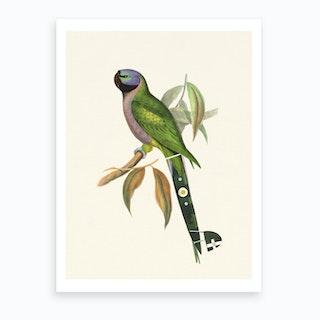 Tropical Green Parrot Art Print