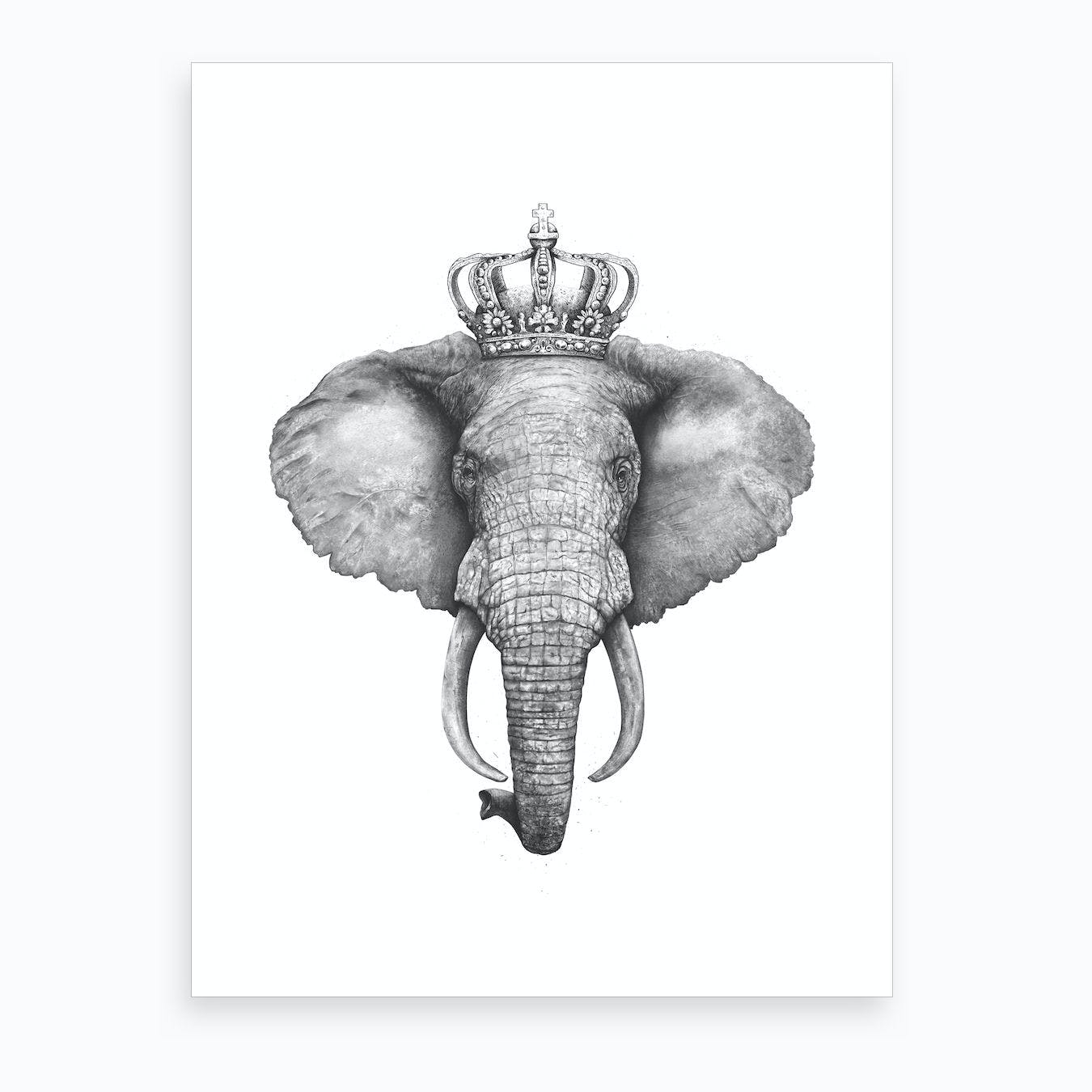 The King Elephant Art Print