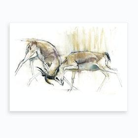 Sand Gazelles