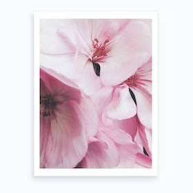 Pink Flowers Photo Art Print