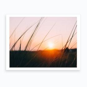 Cape Cod Meadow Art Print