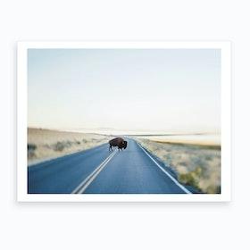 Buffalo Crossing Art Print