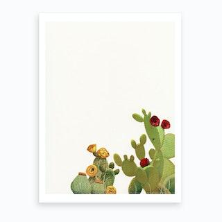 Cactus Garden Ii Art Print