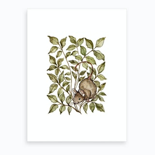 Meadow Mouse Art Print