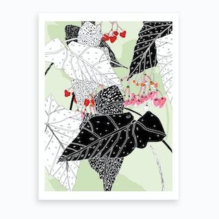 Begonia Graphics Art Print