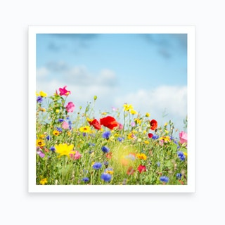 Wildflower Meadow Art Print
