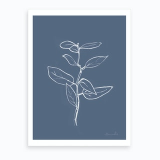 Eucalyptus Sapling Art Print