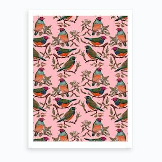 Birdiya Art Print