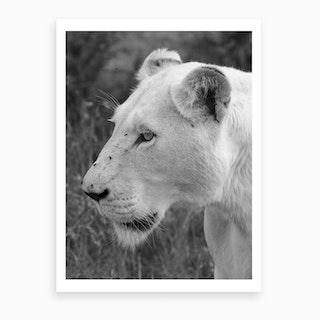 White Lion Female Art Print
